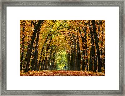 The Mountainbiker Framed Print by Martin Podt