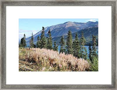The Mountains Framed Print by Dennis Stein