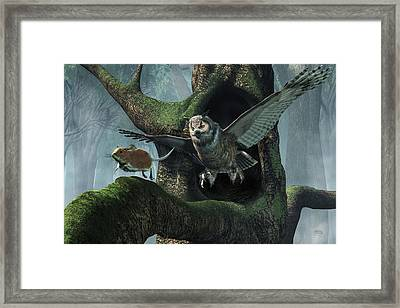 The Mouse And The The Owl Framed Print by Daniel Eskridge