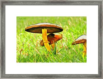 The Mushroom 2 - Pa Framed Print by Leonardo Digenio