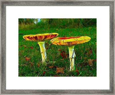 The Mushroom 8 - Pa Framed Print by Leonardo Digenio