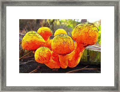 The Mushroom 9 - Da Framed Print