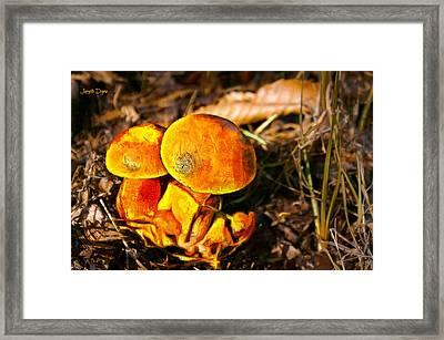 The Mushroom - Painting Over Photo - Pa Framed Print by Leonardo Digenio