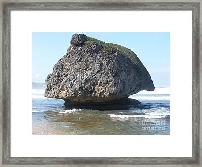 The Mushroom Rock Framed Print