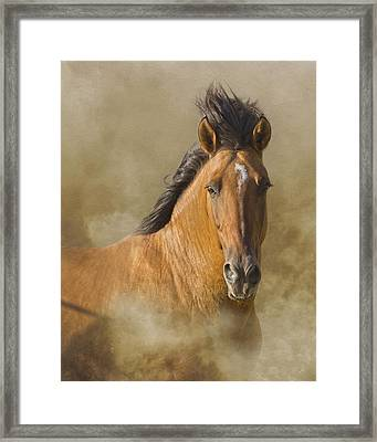 The Mustang Framed Print by Ron  McGinnis