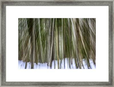 The Mysterious Ascent Of Nature Framed Print