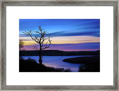 The Naked Tree At Sunrise Framed Print by Semmick Photo