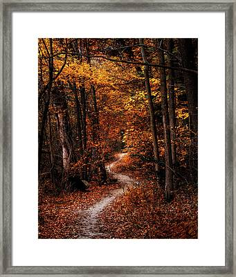 The Narrow Path Framed Print by Scott Norris