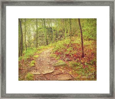The Narrow Way Framed Print