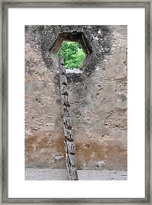 The Narrow Way Framed Print by Teresa Blanton