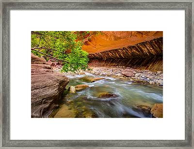 The Narrows Zion National Park Framed Print
