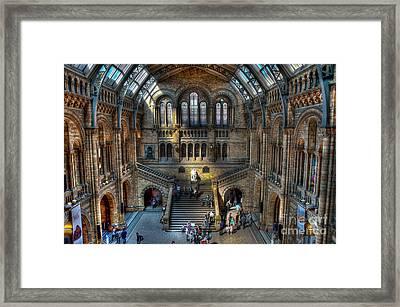 The Natural History Museum London Uk Framed Print