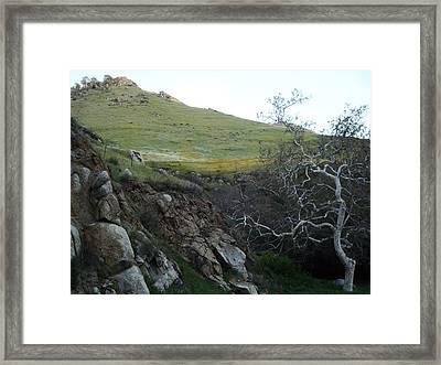 The Natural Framed Print by Steve Ponting