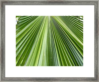 The Nature Of My Abstraction Framed Print by Russell Keating