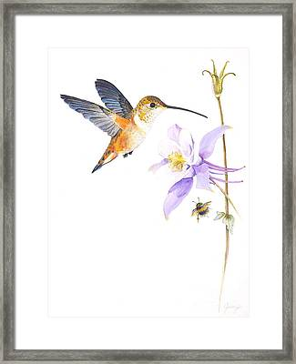 The Nectar Hunt Framed Print by Jany Schindler