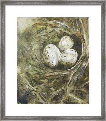 The Nest Framed Print by Donna Thomas