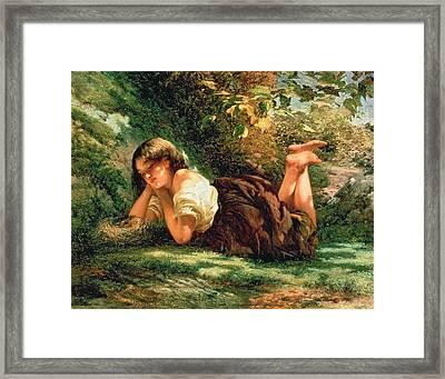 The Nest Framed Print by Robert Gavin