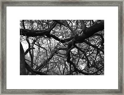 The Neural Net Framed Print