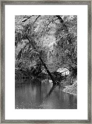The Neuse Framed Print by Lisa Stanley