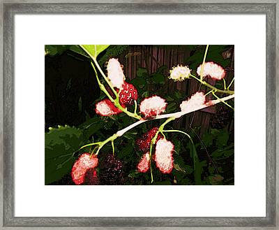 Framed Print featuring the digital art The New Mulberries by Winsome Gunning