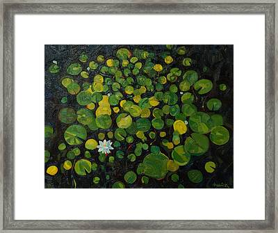 The New Pad Framed Print by Phil Chadwick