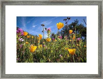 The New Pushes Out The Old. Framed Print