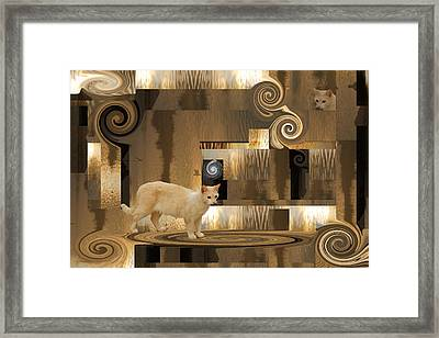 The Next Step - Cat In Abstract Framed Print