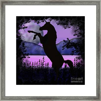 The Night Of The Unicorn Framed Print