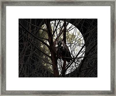 The Night Owl And Harvest Moon Framed Print