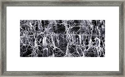 The Nightmare Framed Print by Olivier Le Queinec