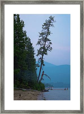 The North Shore At Elkins Framed Print by David Patterson