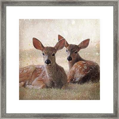 The Observers Framed Print