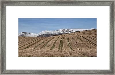 The Ochil Hills In Clackmannanshire Framed Print
