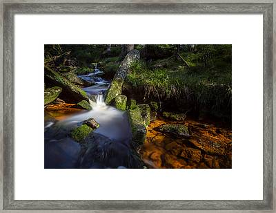 the Oder in the Harz National Park Framed Print