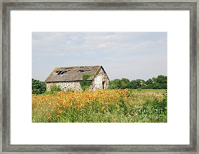 The Old Barn In Moorestown Framed Print