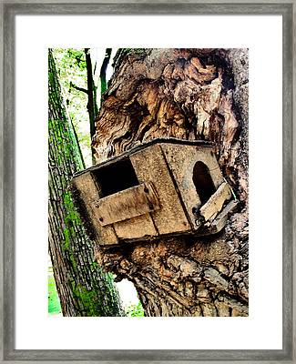 The Old Birdhouse. Framed Print by Andy Za