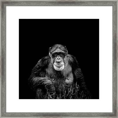 The Old Boy Framed Print