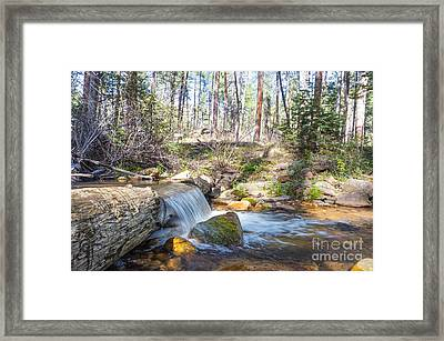 Framed Print featuring the photograph The Old Creek Falls by Anthony Citro
