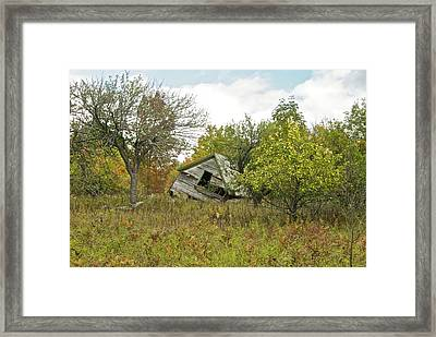 The Old Homestead And Orchard Framed Print by Michael Peychich