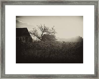 The Old House Framed Print by Svetlana Peric