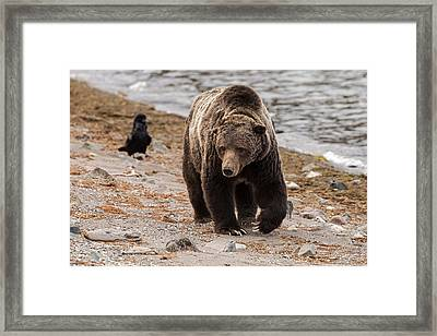 The Old Man And The Sea Framed Print by Sandy Sisti