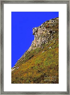 The Old Man Of The Mountain Framed Print by Larry Landolfi