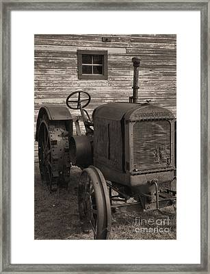 The Old Mule  Framed Print by Richard Rizzo