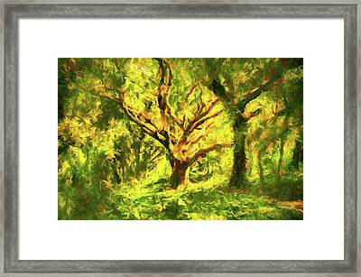 The Old Oak Tree Framed Print by Georgiana Romanovna