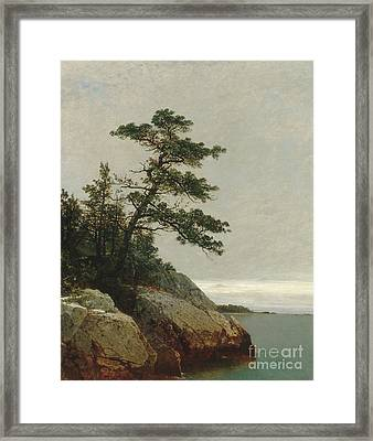 The Old Pine, Darien, Connecticut, 1872  Framed Print