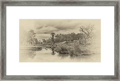The Old Pond Framed Print