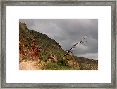 The Old Road From Las Canteras Framed Print by Jez C Self
