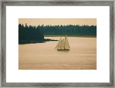 The Old Schooner Framed Print by Dennis Curry