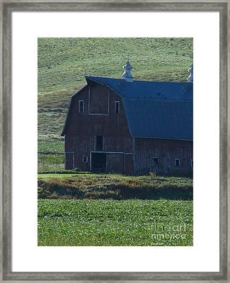The Old Style Framed Print by Greg Patzer