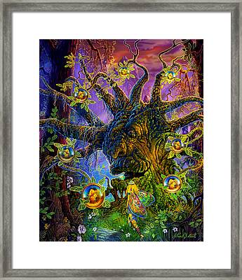 The Old Tree Of Dreams Framed Print by Steve Roberts
